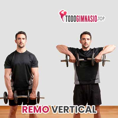 remo vertical